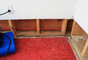 carpet water damage